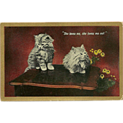 Vintage Postcard of Two Persian Kittens - She Loves Me