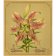 Small Chromolithograph of Lily - Christmas Offering