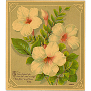 Small Chromolithograph of Easter Flower