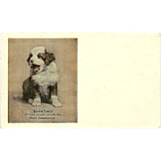 Undivided Advertising Postcard for Hood's Sarsaparilla