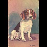 SOLD Alfred Mainzer Vintage Postcard of Beagle - Artist Signed Jorge