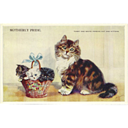 SALE Artist Signed Mabel Gear Vintage Postcard of Mother Cat with Basket of Kittens