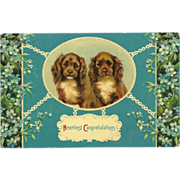SALE Embossed Glossy Congratulations Postcard with Two Spaniel Dogs