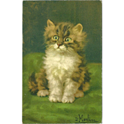 Vintage Artist Signed Postcard of Sweet Wide Eyed Kitten