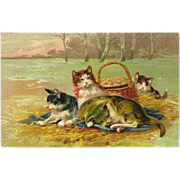 Embossed PFB 1908 Postcard of Four Cats in a Field