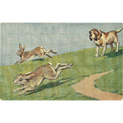 Vintage Postcard of Dog and Two Rabbits