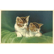 Alfred Mainzer Vintage Postcard of Two Kittens