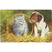British Postcard of Puppy and Kitten