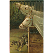 Embossed Advertising Postcard with Two Horses and Two Dogs
