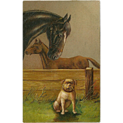 Embossed 1907 Postcard of Horse, Colt, and Bulldog