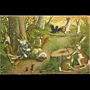 SOLD Max Kunzli Dressed Cats Mainzer Postcard of Sleeping Hunter