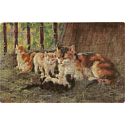 Artist Signed Postcard of Mother Cat and Three Kittens