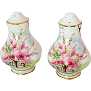 SALE Royal Albert Blossom Time Pink Floral Scenic Salt and Pepper Shakers