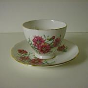Royal Vale English Bone China Pink Cornflowers Tea Cup and Saucer