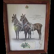Framed Horse Print Pair of Beauties Advertising Horse Tack Cambridge Illinois