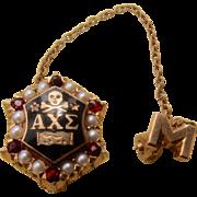 Ca 1925 Alpha Chi Sigma Pin 14K Garnets Pearls Enameled