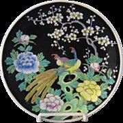 Nippon Birds of Paradise Enameled Porcelain Plate