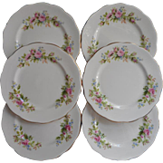 Moss Rose Royal Albert Bread Plates Vintage Bone China Set 6