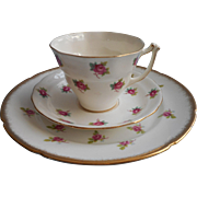 Roses English Bone China Vintage Cup Saucer Plate Mismatched Trio