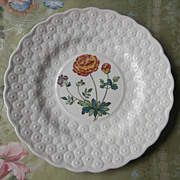 Spode Ranunculus Alden Daisy Plate Hand Painted Vintage China