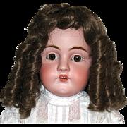 SOLD Gorgeous Vintage Dark Brown Wig w Long Sausage Curls--sz 14-15