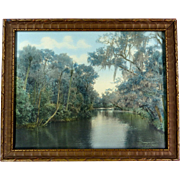 William H. Gardiner Stunning Hand Colored Photograph Signed Framed Florida Spanish Moss Image