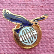 Vintage Outdated Argentinian Airline LADE Badge
