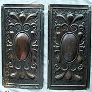 Victorian Art Nouveau Door Push Plates