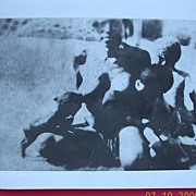 Genuine WW2 Photograph of New Guinea Native Woman Breast Feeding Baby & Puppy Dog