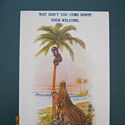 "Black American Postcard "" Why Don't You Come Down? Your Welcome"