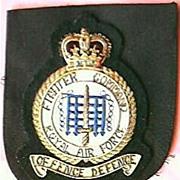 Vintage  RAF Blazer Pocket Insignia