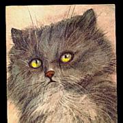 SOLD Fred Sauter Grey Hair Cat Vintage Postcard