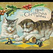 1907 Christmas Cats/Kittens Playing Postcard