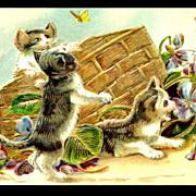 Kittens Playing with Basket ASB 1910 Postcard