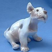 "SALE Fox Terrier Schnauzer Bing & Grondahl  Dahl Jensen 6"""