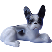 1920 French Bulldog reclining puppy Germany 3""