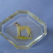 Greyhound salt Hoffman