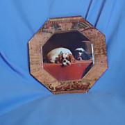 """Cavalier King Charles spaniel plate by Marye-Kelley 8"""""""