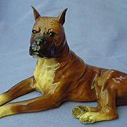 "Boxer dog Mortens Studio 8"""