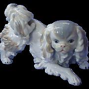 """1970 playful Pekingese Japanese Chin 10"""""""