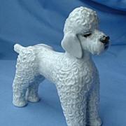 "SALE 1950s Rosenthal grey Poodle  Germany 7"""