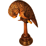 SOLD Wooden and Brass Parrot Pocket Watch Holder