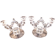 Pair of Cambridge Double Keyhole Candlesticks - Wildflower