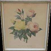 French Antique Framed Print Antique Floral Print