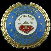 14k Gold Luzerne County Community College Nursing Pin