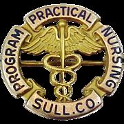 10k Solid Gold Sullivan County Practical Nursing Program Nursing Pin