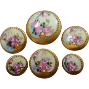 SOLD 6 Victorian Porcelain Hand Painted Floral Buttons
