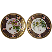 2 BROWN-WESTHEAD MOORE hand painted plates B5239 rose & lily 1880s aesthetic