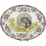 Vintage Royal Staffordshire Turkey Platter made in England by Clarice Cliff