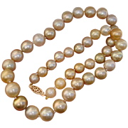 SALE Valentines Special ! Gorgeous 11.5mm Golden Champagne South Sea Cultured Pearls & 14K Gol